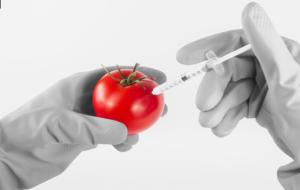 Lebensmitteltechnik